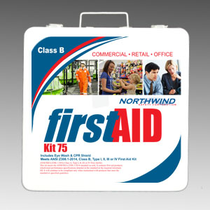 First Aid Kit ANSI 2015 75 Person