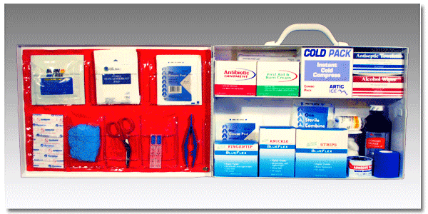 FoodSafe™ First Aid Cabinet 200
